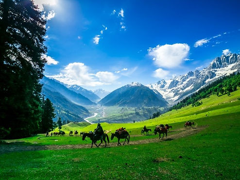 Beautiful Kashmir Valley tour