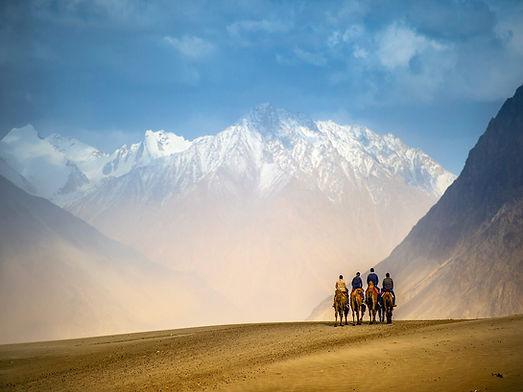 Ladakh Tour, Khardungla Pass, Sand Dunes