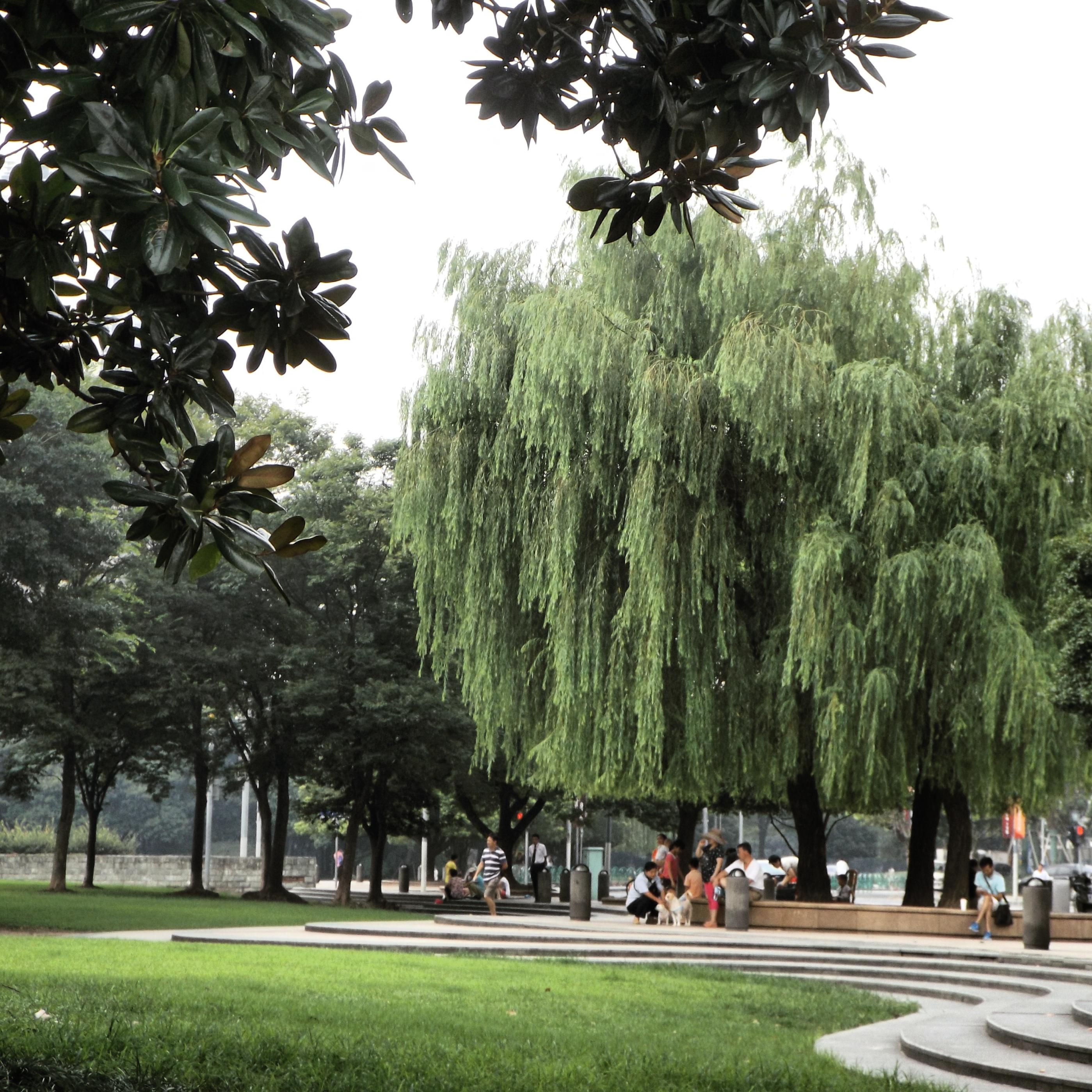 Xintiandi park