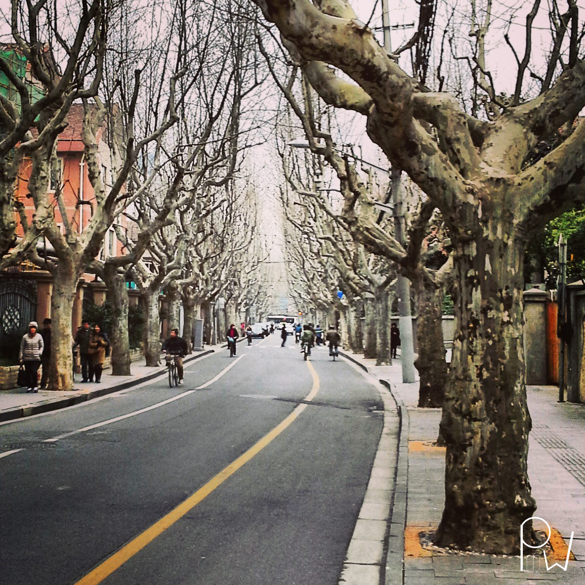 French Concession...