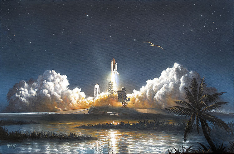 Discovery Night Launch