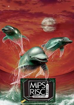 Vortex PR - Dolphin