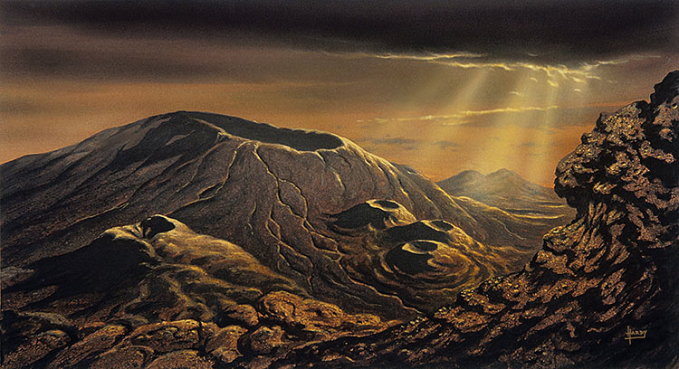 Volcanoes of Venus1