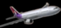 Hawaiian_Plane_2.png