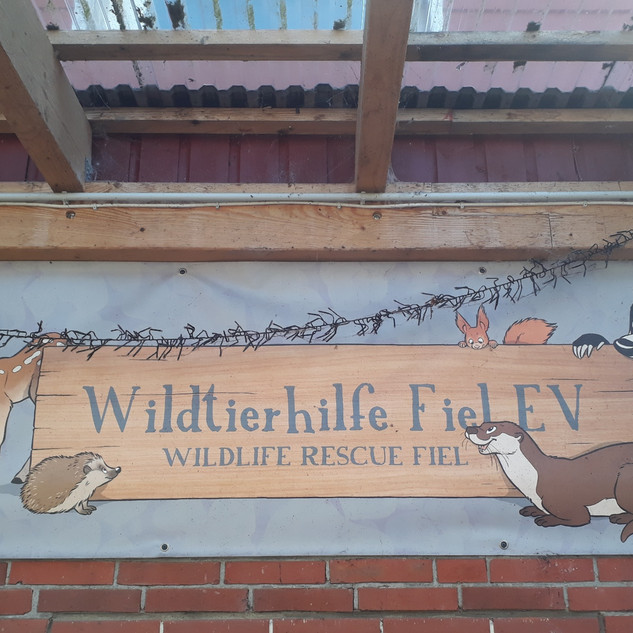 Wildtierhilfe Fiel
