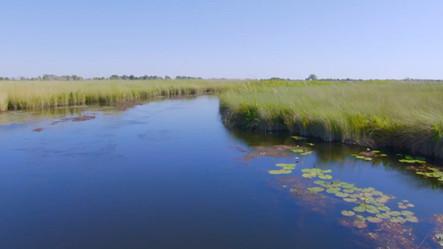 The Okavango Lifeblood of The Kalahari