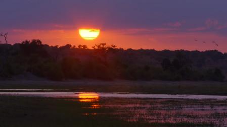 Chobe River of Life