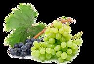 kisspng-apple-juice-common-grape-vine-mu
