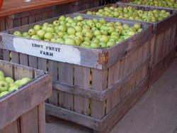 apples_in_bins