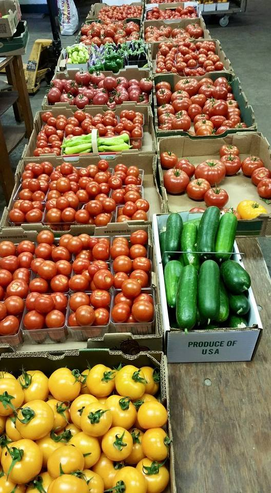 tomatoes_in_boxes