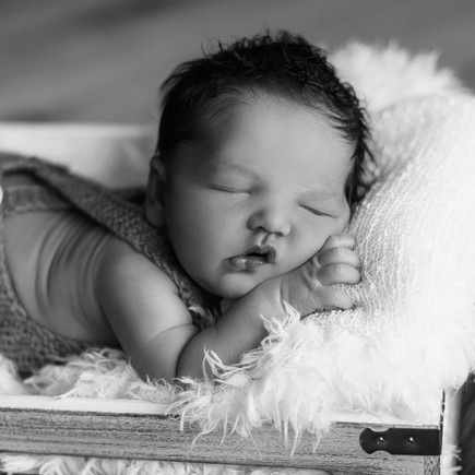 Newborn / Babyshooting / Babyfotografie