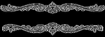 Logo schwarz definitiv.png