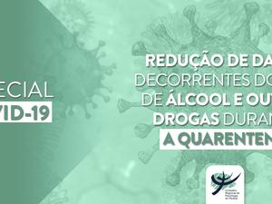 Orientações à sociedade sobre a redução de danos decorrentes do uso de álcool e outras drogas.....