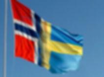 Svenska och norska trucktyper