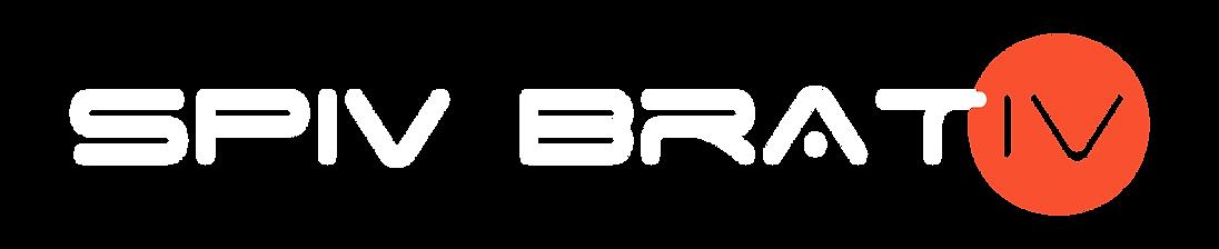 SB logo_Монтажная область 1 копия.png