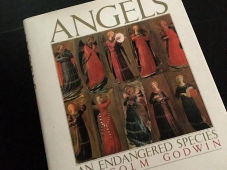 Angels & ...Angels?!
