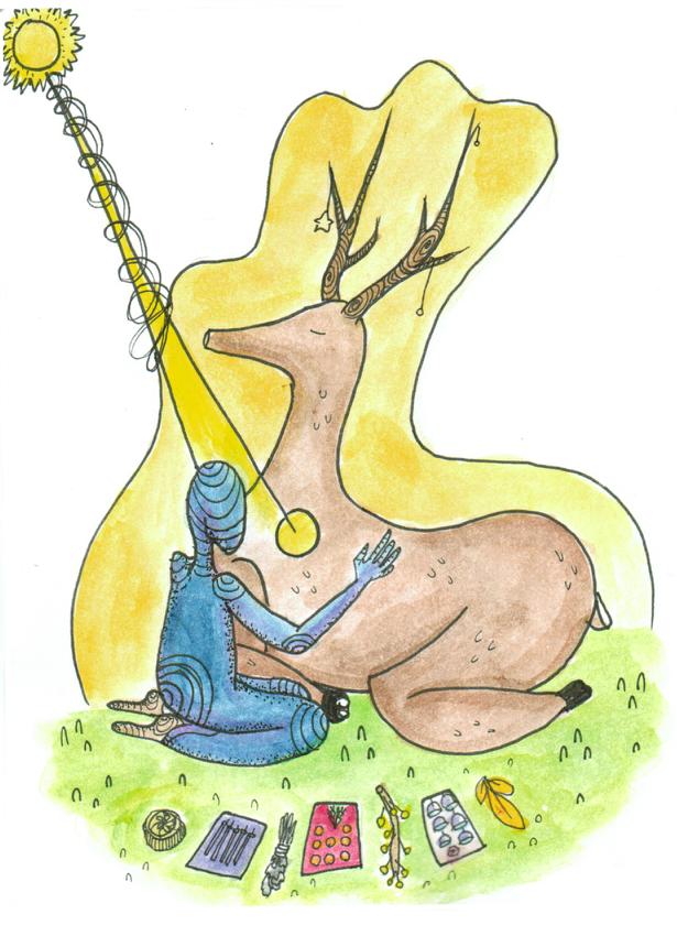 Spirit Animals & Animal Communications