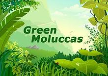 Logo-Green-Moluccas.jpg