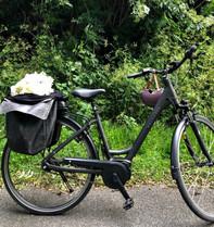 electric bike... always handy!