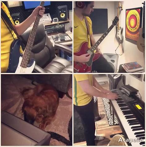 Hard Pup Life