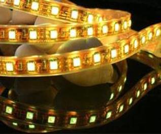 Strip-Light.png