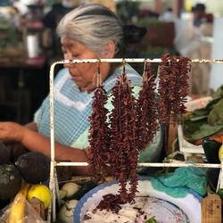 Market life in Oaxaca #tgtcoaxaca #tgtcm