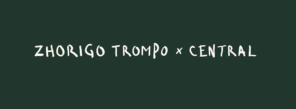 200706_Def_Zhorigo_Trompo_Website_Elemen