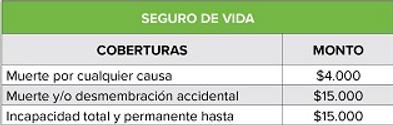 Cuadro_SeguroVida.png