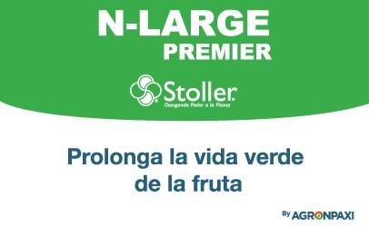 N-LARGE PREMIER