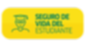 SEGURO-DE-VIDA.png