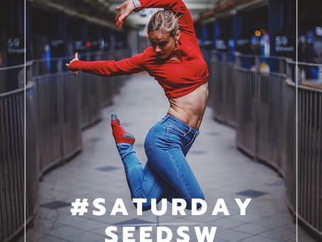 A red burst for your Saturday Seed!