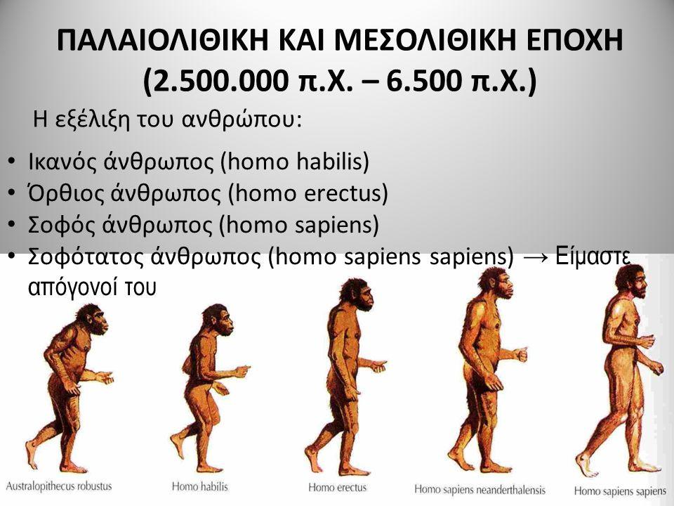 Στην αρχή της Ύστερης Παλαιολιθικής περιόδου, πριν από 50.000 χρόνια, είχαν ήδη εμφανιστεί τα σύγχρονα χαρακτηριστικά και επιτεύγματα του ανθρώπου όπως η ομιλία, η μουσική και άλλα. Η μετακίνηση των πληθυσμών έξω από την Αφρική εκτιμάται πως έγινε πριν από 70.000 χρόνια. Οι σύγχρονοι άνθρωποι σταδιακά εξαπλώθηκαν σε όλες τις ηπείρους, αντικαθιστώντας τις άλλες ανθρωπίδες: έφτασαν στην Ευρασία και την Ωκεανία πριν από 40.000 χρόνια και στην Αμερική τουλάχιστον πριν από 14.500 χρόνια.[18] Μία θεωρία υποστηρίζει πως αντικατέστησαν τους πληθυσμούς του Homo neanderthalensis και άλλων ειδών που καταγόντουσαν από τον Homo erectus (που βρισκόντουσαν ήδη στην Ευρασία για τουλάχιστον 2 εκατομμύρια χρόνια) χάρη στο ιδανικότερο σύστημα αναπαραγωγής και τη διαρκή αναζήτηση φυσικών πόρων.