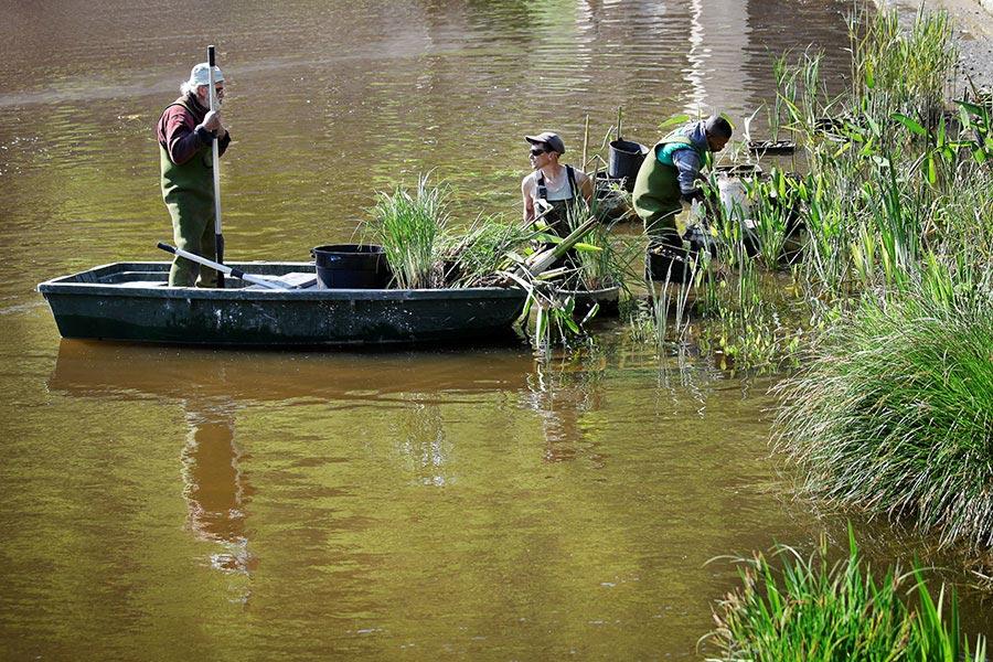 entretien  bord de rivière