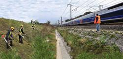 Débroussaillage bord de voie TGV