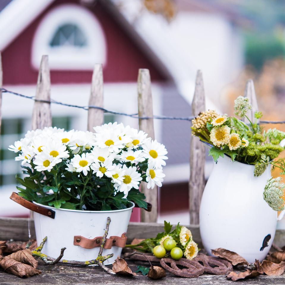 bildhuebsch.photos-Herbst-mit-Anna-4.jpg