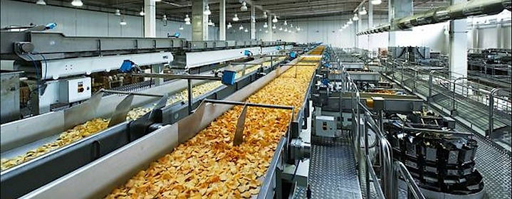 Food-Processing-SECTOR.jpg