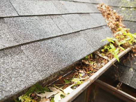 The importance of keeping your gutters clean.
