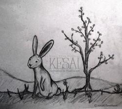 Hare / Crop
