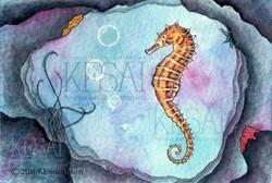Sea Horse / Cave