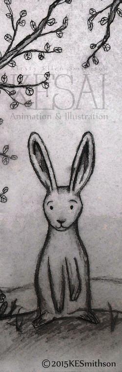 long hare 1.jpg