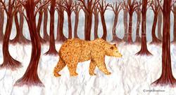 The Frozen Bear