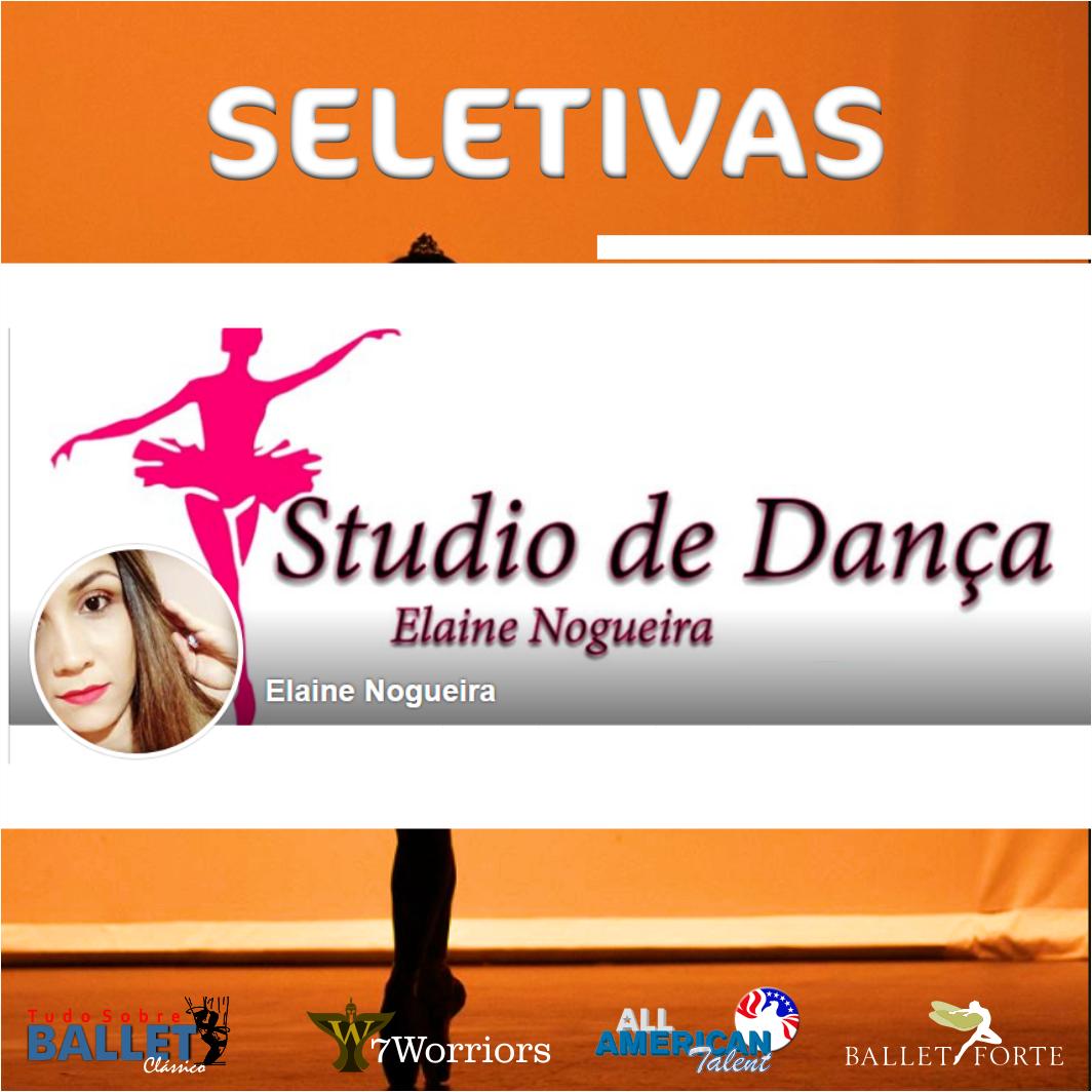STÚDIO ELAINE NOGUEIRA