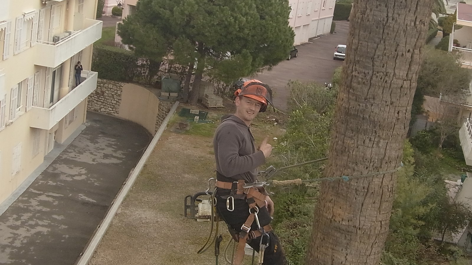 Jean Phi sur un palmier