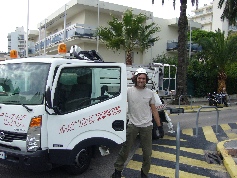 Gilles en taille de palmiers