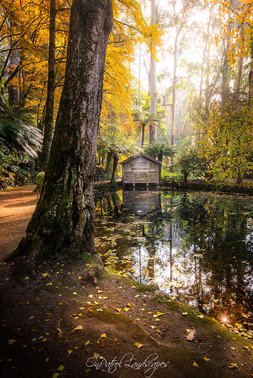 """Boathouse In Autumn"""