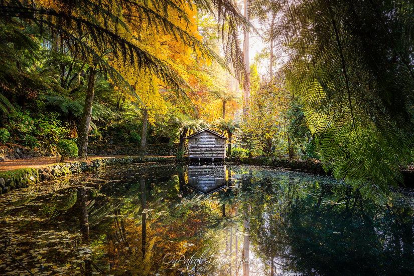 """""""Boathouse Reflection"""""""