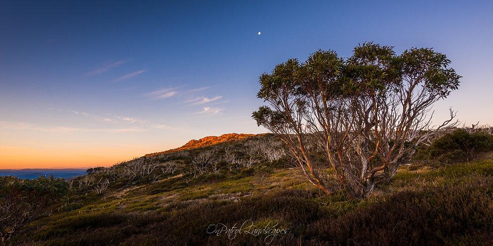 """""""Mount Wellington Last Light"""""""