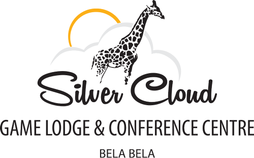 silver-cloud-logo