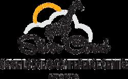 silver-cloud-logo