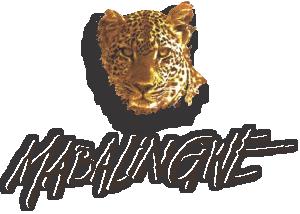 mabalingwelogo
